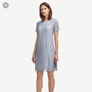 Ann Taylor Periwinkle Lace Dress